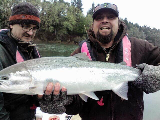 Winter Steelhead Jan 2019